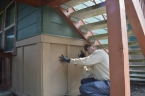 apartment pest control inspection services provided by Pioneer Pest Management serving Portland OR Vancouver Longview WA