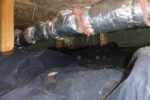 Crawl Space restored and clean up Portland OR Vancouver WA Camas Gresham Longview Kelso WA OR