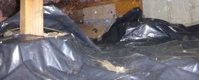 crawlspace-featured-french-drain