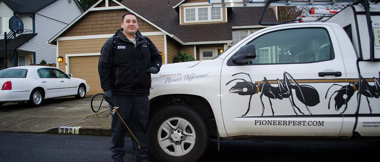 spider exterminators and control in Portland OR and Vancouver WA