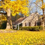 5 tips for keeping pests out of your home this fall by Pioneer Pest Management in Portland OR and Vancouver WA