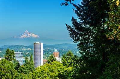 Pest control by Pioneer Pest Management serving Portland OR and Vancouver WA