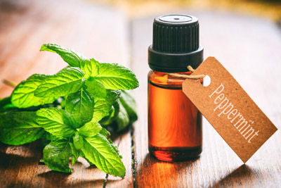 Bottle of peppermint oil. Pioneer Pest Management talks about 6 home remedies repel rodents