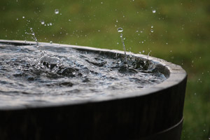Rain is falling in a wooden barrel full of water in the garden. Pioneer Pest Management serving Portland OR and Vancouver WA talks about why April showers bring more than flowers, including pests.